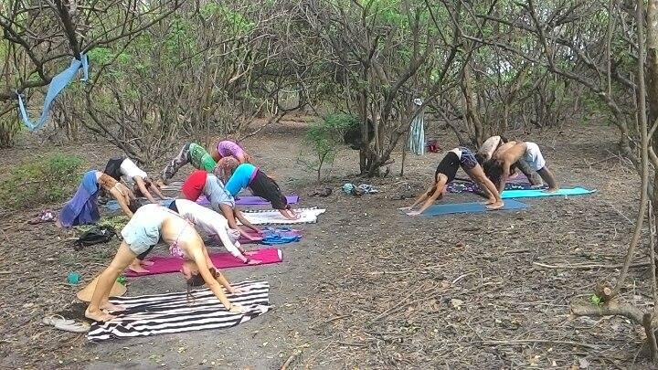 Practicing ashtanga yoga. Photo by Noel and Karolina