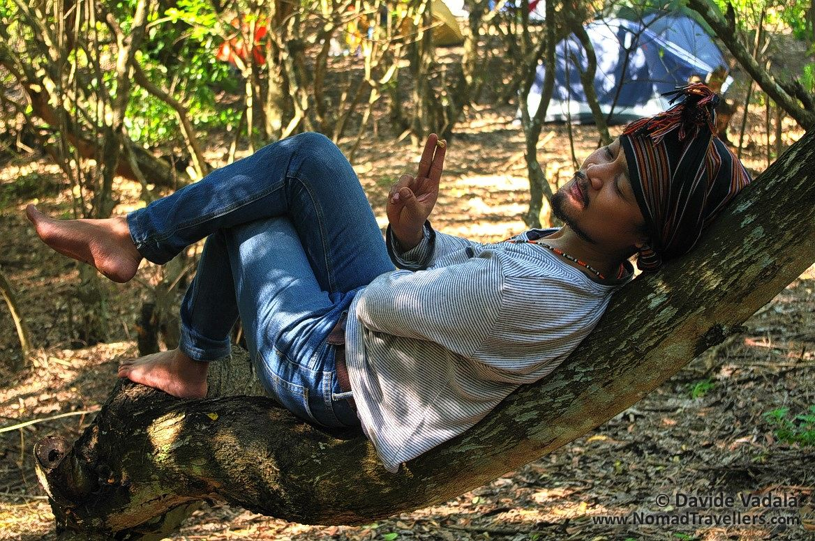 Relaxing on a tree trunk
