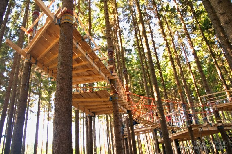 Tree climbing and tree house building training in Czech