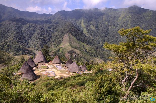 Wae Rebo seen from the top of the hill
