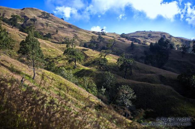 Rolling hills at the feet of Mount Rinjani