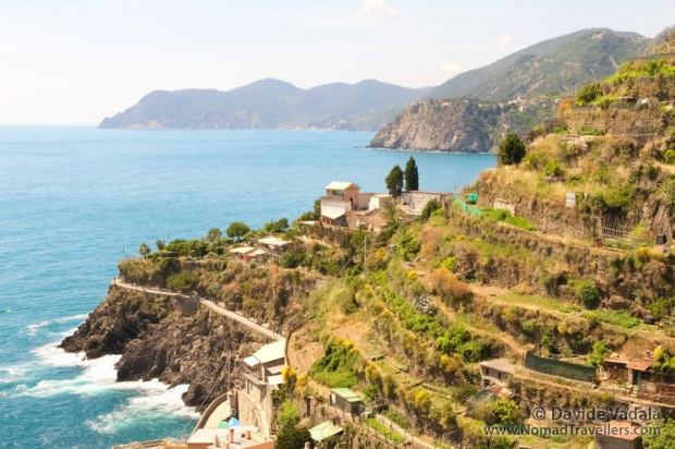 Terraces cutting the hills in Cinque Terre