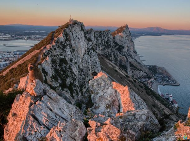 Sunset panorama from the top of the Rock of Gibraltar, next to a monkey